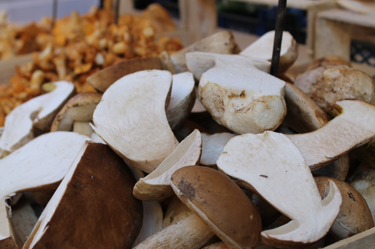 Funghi porcini in zuppa