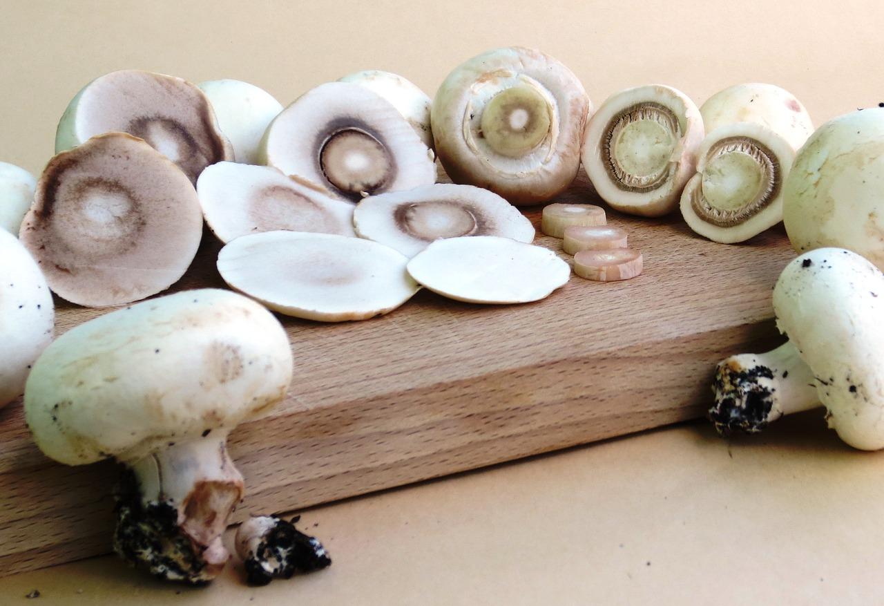 Funghi con crema di granchio