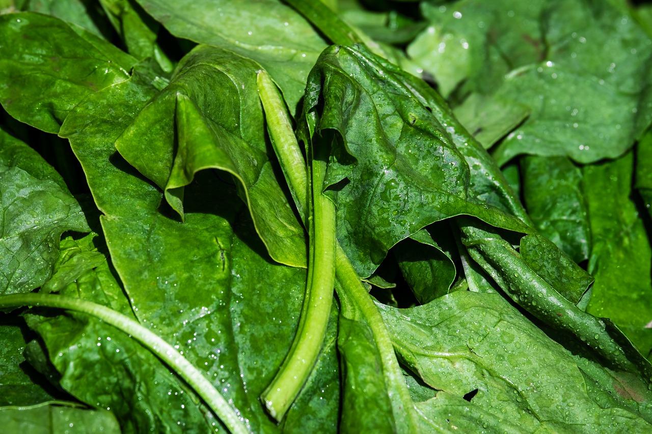 Crostata di spinaci e pancetta